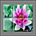 Tile-Murals-Backsplash_Flowers-Lily-Pink-01thumbnail.jpg